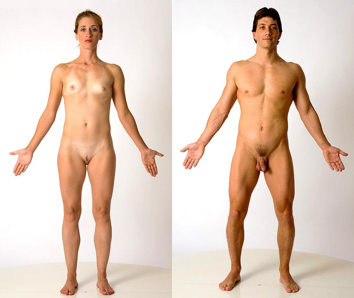 Nude human beings porn homemade stripper