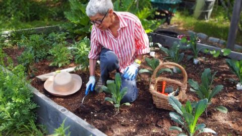 Gardening this weekend? Time to get naked (via The Bangor Daily News)